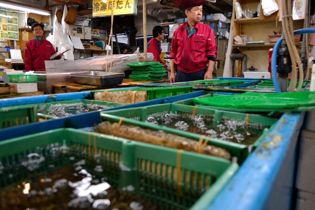 Guia viaje Japon Tokyo Tsukiji