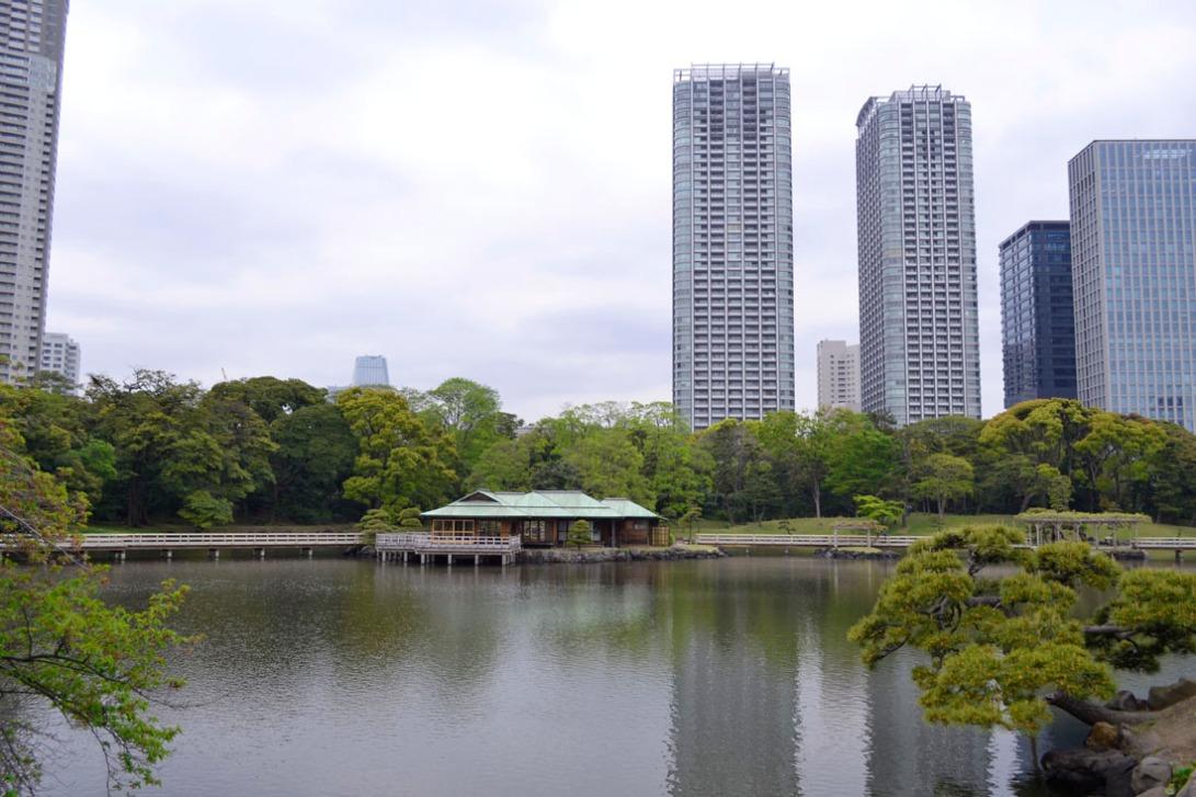 Guia viaje Japon Tokyo hamarikyu